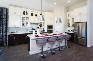 Gehan Homes Cardinal Purple Kitchen