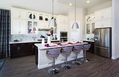 Gehan Homes Cardinal Purple Kitchen
